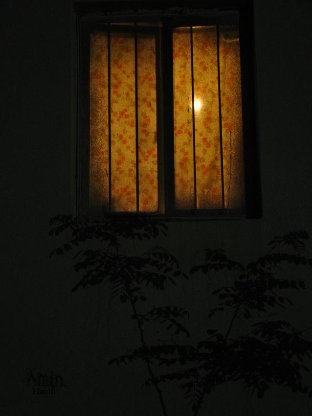 پنجره , نگاه , سایه